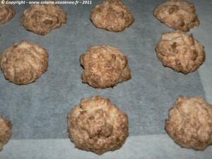 Mini-rochers à la noix de coco fin
