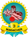 Médaille maraicher 3 légumes