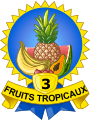 Médaille 3 fruits tropicaux