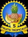 Médailles 5 fruits tropicaux