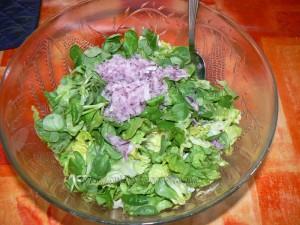 Salade tiède de scampi etape1
