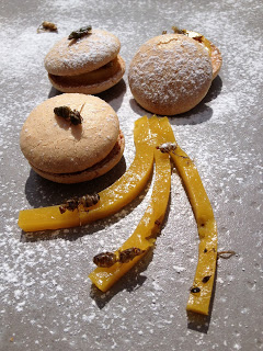 Macarons mangue-gingembre aux fourmis ailees