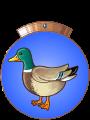 chevalier-canard.90x120