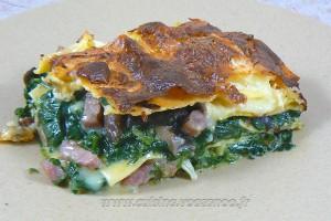 Lasagnes au coulommiers et épinards