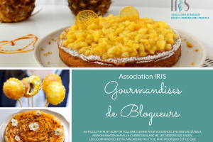 """""""Gourmandises de Blogueurs"""" pour l'association IRIS"""