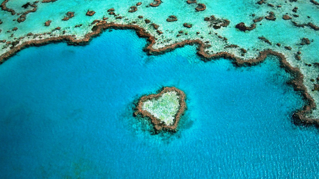 australie-plongee-dans-la-grande-barriere-de-corail
